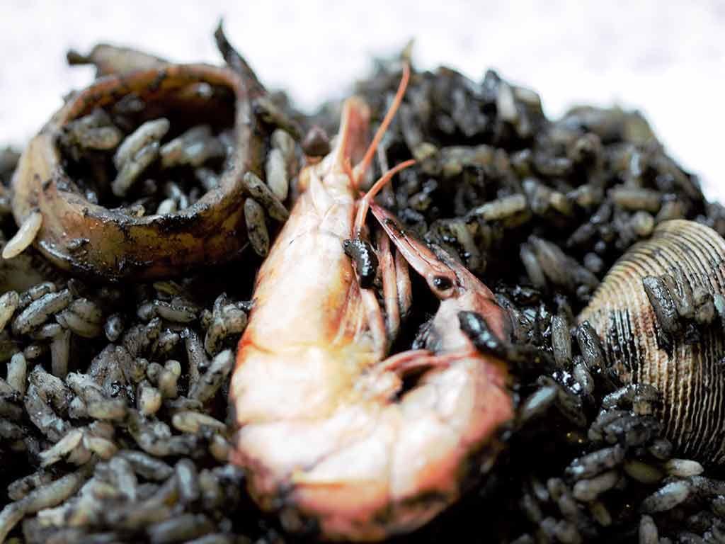 Platillos de Cuaresma, la Saragaya es un platillo veracruzano ideal para estas fechas. Se trata de pescado guisado (puede ser cazón o sierra) con chile chipotle, que se puede acompañar con arroz, o que puede ser la base de platillos como empanadas o tostadas